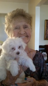 Sara Ivey is so thrilled to have Maltese boy Gordy traveling companion